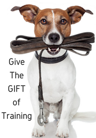 give-the-gift-of-training